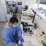 Bio Innovation